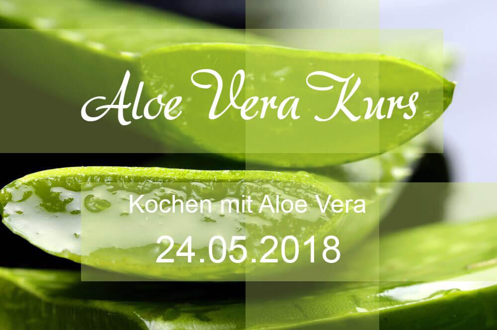 Aloe Vera Kochkurs
